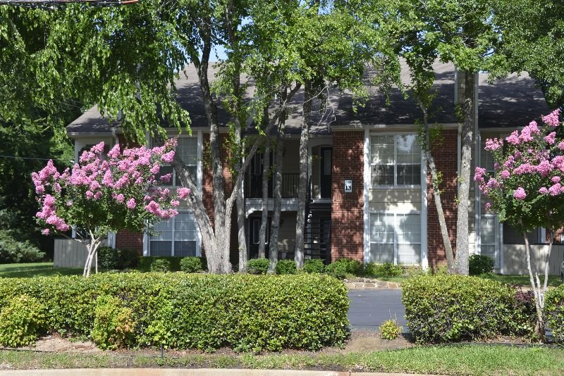 Main picture of Apartment for rent in Tyler, TX